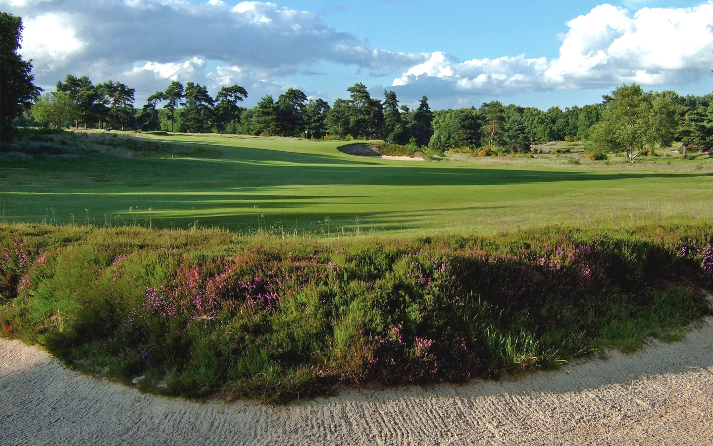 Walton Heath Golf Club - Commonwealth Trophy Venue