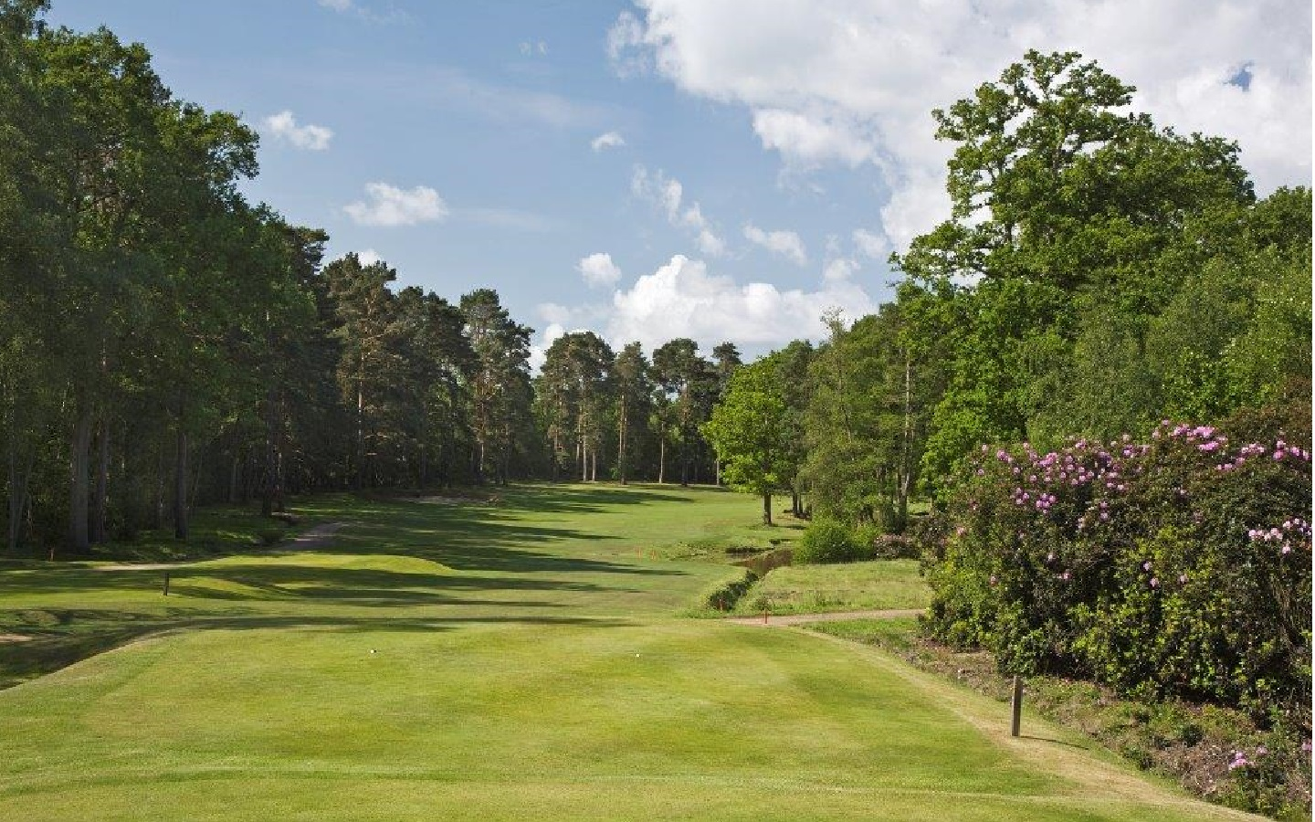 Worplesdon Golf Club - Captain's Day Venue